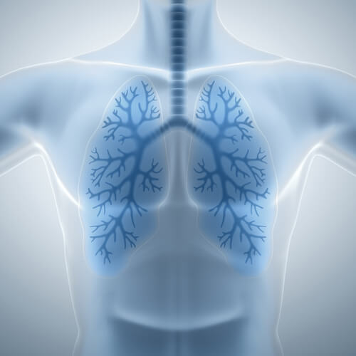 healthy-lungs