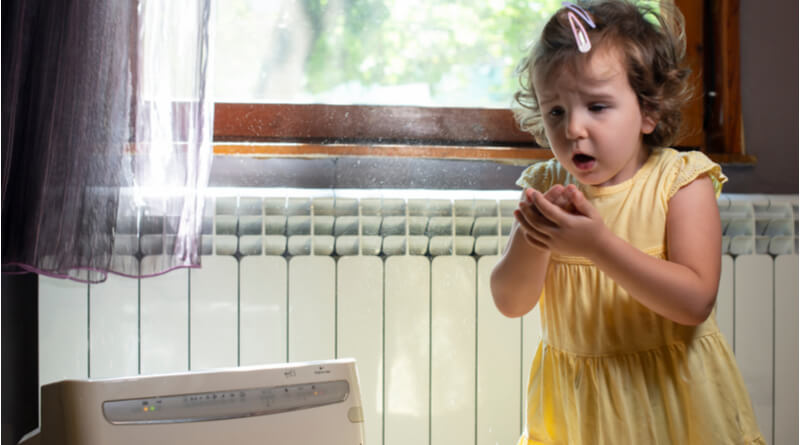home remedies for dust allergy