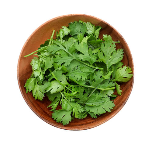 The Magic of Coriander