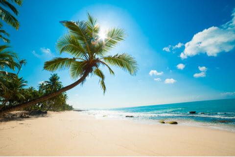 Get your beach bag ready!