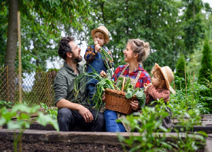 10 Tips to Make Sustainable Living Work for You