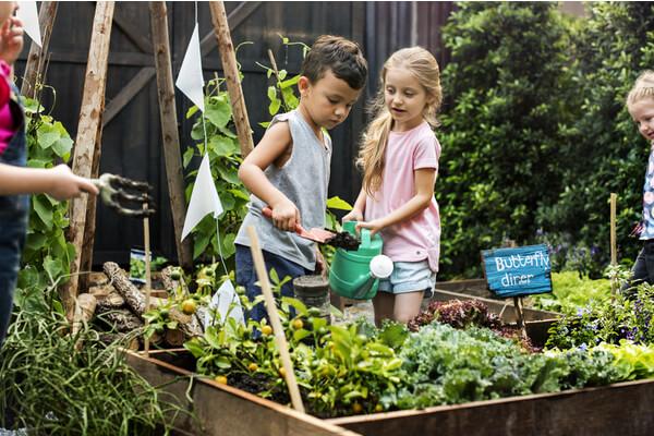 teach them about gardening