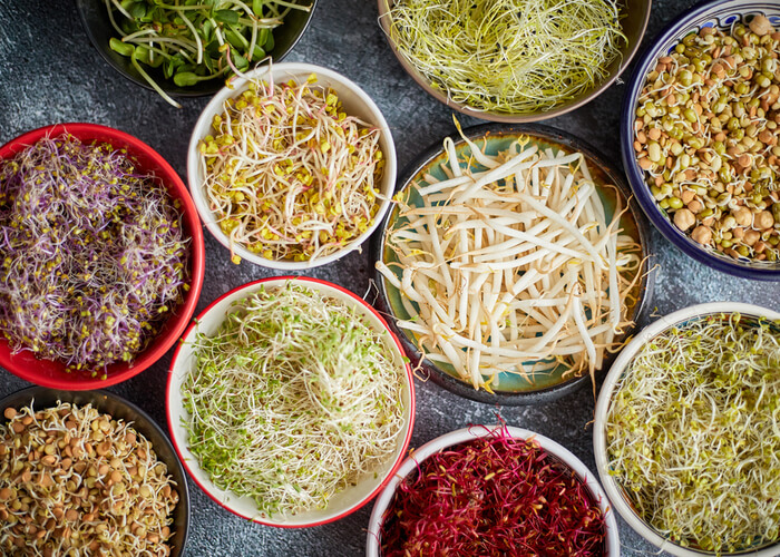 10 Reasons To Include Sprouts In Your Diet